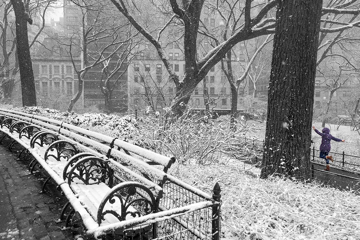 Snow Day, Central Park, New York