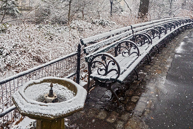 Benches, Central Park (c)2015 Russell Johnson