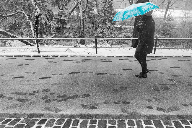 Blue Umbrella Central Park (c)2015 Russell Johnson