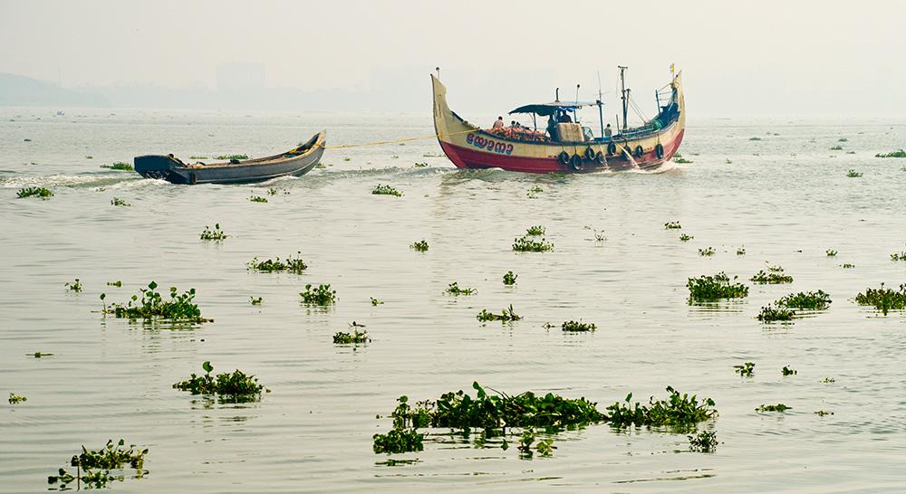 Kochi, India Harbor