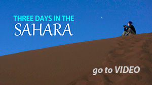Sahara Video