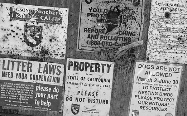 Signs on the road to Wingo, California