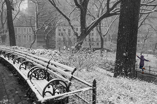 Snow Day, Central Park (c) 2015 Russell Johnson