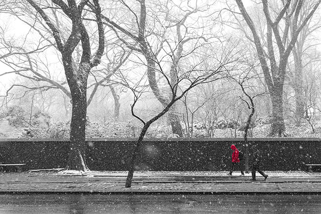 First Day of Spring Central Park (c) 2015 Russell Johnson