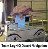 Tortoise Team