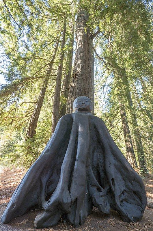 Tree Buddha