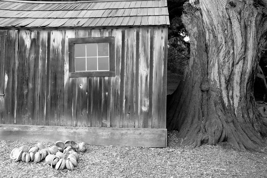 Whalers Cabin PtLobos