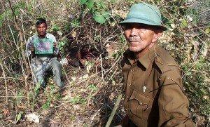 Tiger Kill, India