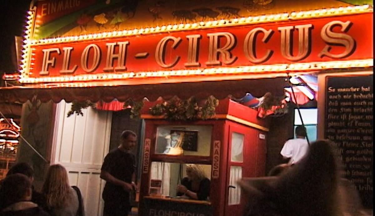 The Last Flea Circus