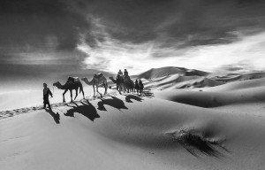 Caravan, Sahara
