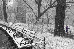 Snow Day, Central Park, New York