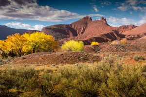Castle Valley, Utah - Fall Colors