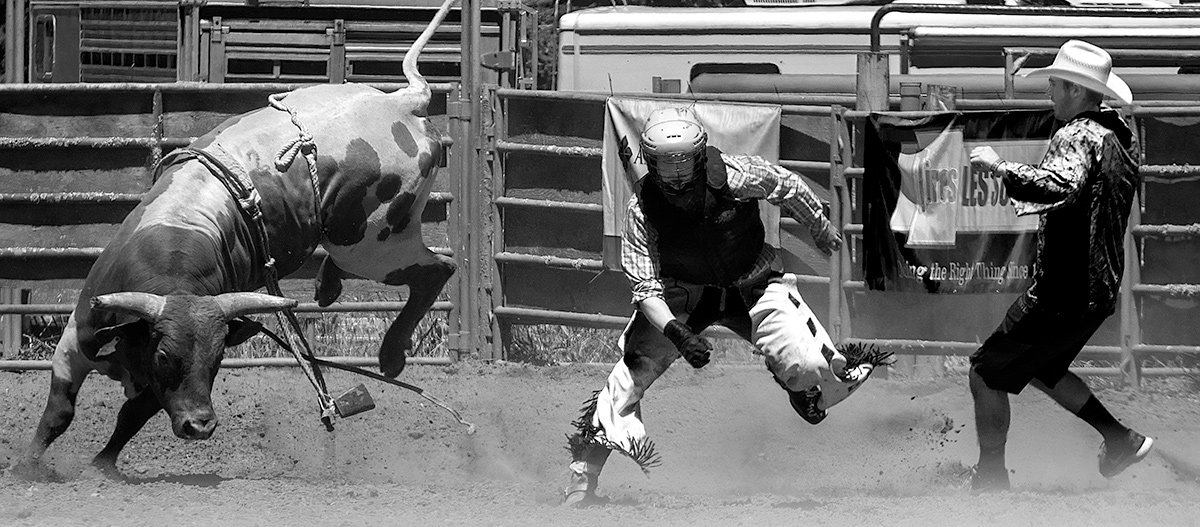 Bucking Bull and Cowboys