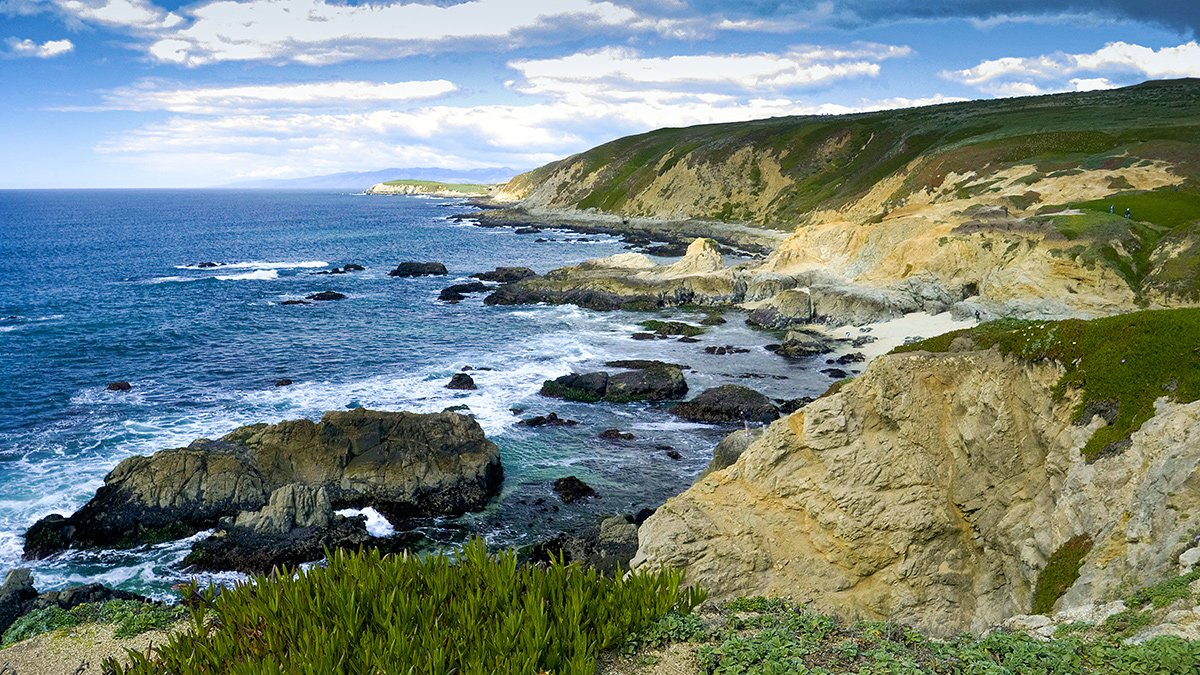 VIDEO: A Nature Minute at Bodega Bay: Sights and Sounds of the California Coast
