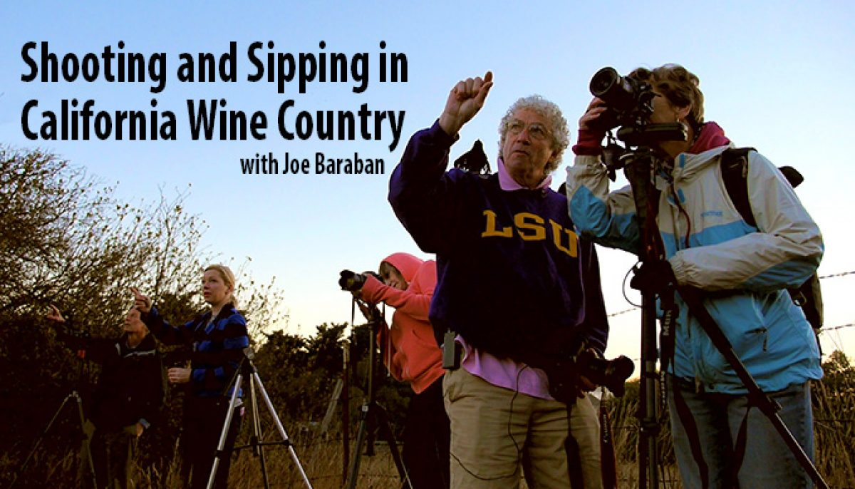 Shooting and Sipping: Photography Lessons in California Wine Country (Video)